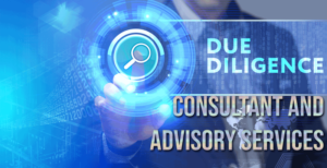 Due Diligence Advisory Services in Delhi